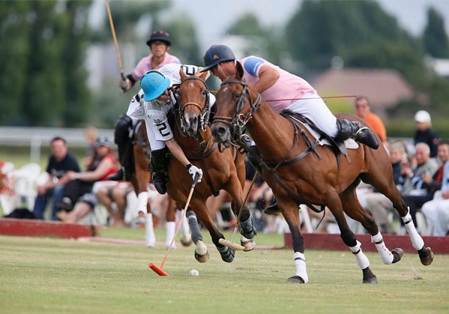 International Polo Cup